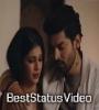 Humein Pyar Ab Dobara Hona Bahut Hai Mushkil Status Video Download