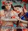 Radha Krishna Love Romantic Status Video Download