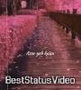 Rang Jo Lagyo Asare Kaisa Teri Chahat Ka Aesthetic Status Video Download