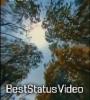 Ranjhana Hua Mai Tera Song Aesthetic Reels Status Video Download