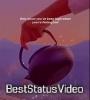 Let Her Go Passenger Aesthetic Status Video Download