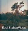 Dil Sambhal Ja Jara Instagram Reels Status Video Download