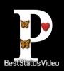 P Name Status Video For Whatsapp