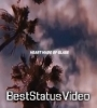 Heart Made Of Glass My Mind Of Stone Status Video Download