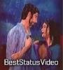 Boroxare Sesa Tupal Zubeen Garg WhatsApp Status Video Download