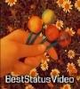 Kabhi Toh Paas Mere Aao Aesthetic Status Video Download