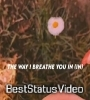 Peaches Justin Bieber Song Whatsapp Status Video Download