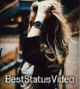 Aati Hai Woh Aise Chal Ke Female Version Status Video Download