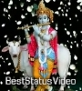 Chul Bulia Chhan Chhania Nat Khatia Odia Bhajan Status Video Download