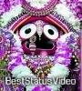 Hata Thari Mate Dakibaki Sate Jagannath Bhajan Status Video Download