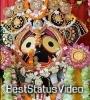 Asadha Asiba Jae Dori Lagi Thau Jai Jagannath Odia Bhajan Shorts 4k Status Video Download