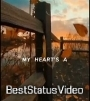 Gym Class Heroes Stereo Hearts Status Video Free Download