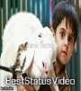 Bakra Eid Special 30 Seconds Status Video For Whatsapp