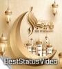 Eid Ul Adha Animals Video Qurbani