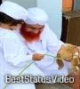 Bakra Eid Status Video Download Mirchi