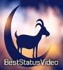 Bakra Eid Whatsapp Status Video Download Free