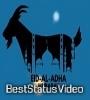 Eid Ul Adha 2021 Status Video Download