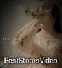 Aankho Ko Gila Hai Jo Palkon Pe Likha Hai Jo Female Status Video Download