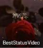 Ankhiyon Se Dariya Beh Gaya Ek Tarfa Female Status Video Download