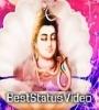 Mahakal Attitude Status Video Download Sharechat