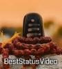 Sharechat Mahakal Status Video Moj