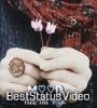 Tu Jo Mila Sab Mil Gaya Female Love Song Whatsapp Status Video Download