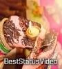 Teej Special Status Video Download Mirchi