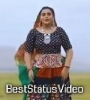 Pankhi Udi Javana Kajal Mahriya Status Video Download