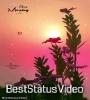 Good Morning Tik Tok Video Download Wapwon