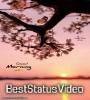 Good Morning Tik Tok Video Song Download