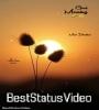 Good Morning Tik Tok Video Share Chat