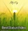 Good Morning Tik Tok Video Status Market