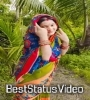 Badhu Besa Saju Saju Song Status Video Download