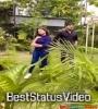 Dhire Dhire Katha Badhila Nalanda Putuli Odia Seriel Whatsapp Status Download