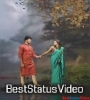 Teri Najar Ka Teer Sanam Mere Jigar Ke Paar Hua Cute Love Status Hindi Video Download