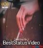 Kawish Tamimi Whatsapp Status Video Download