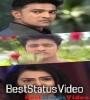 Prema Bodhe Hebara Nathila Odia Sad Status Video Download