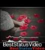 Koi Sehri Babu Dil Lehri Babu Status Video Download