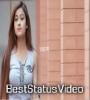 Dilbar Dilbar   Instrumental   Love Whatsapp Status Video Status