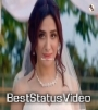 Menu Apna Bana Le Meri Heeriye Whatsapp Status Video