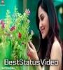 Mera Ek Sapna Hai Dekhu Tujhe Sapno Mein Romantic WhatsAp Status Video