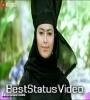 Pehli Dafa Tujhe Dekha Maine Dil Ye Mujhse Begana Ho Gaya Status Video