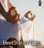 Yoga Day Special   Best and New Whatsapp Status Video