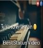Tu Kya Jane Tere Bin Mar Jayenge Whatsapp Status Video