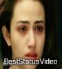 Kaisa Ye marz Hai Ishq Ishq WhatsApp Status Video Download