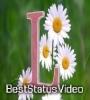 L Name WhatsApp Status Video Download