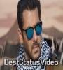 Tiger Zinda Hai Instrumental WhatsApp Status Video
