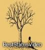 Arum kaanade Malayalam Lyrical Song Whatsapp Status Video