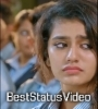 Maahiya Oru Adaar Love Whatsapp Status Video